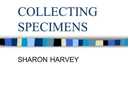 COLLECTING SPECIMENS SHARON HARVEY. SPECIMENS ANY BODY TISSUE CAN HAVE A SPECIMEN TAKEN FROM IT THE MOST COMMON SPECIMENS INCLUDE: BLOOD URINE FAECES.
