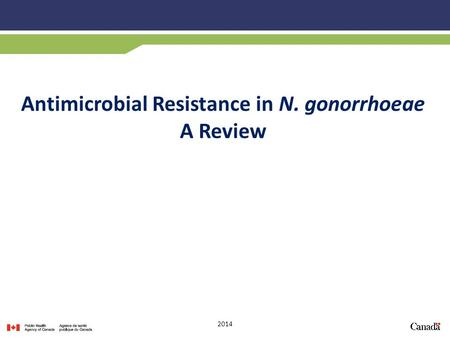 Antimicrobial Resistance in N. gonorrhoeae A Review