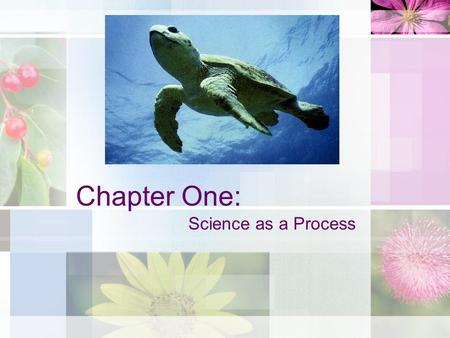 Chapter One: Science as a Process.