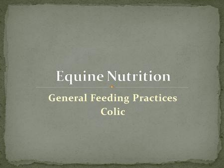 General Feeding Practices Colic. How Much Water Should a Horse Receive? At rest at moderate environment eating dry forage: 0.3 to 0.8 gal/100 lbs BW Amount.