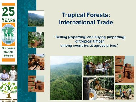 """Selling (exporting) and buying (importing) of tropical timber among countries at agreed prices"" Tropical Forests: International Trade."