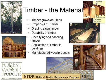 Timber - the Material Timber grows on Trees Properties of Timber Grading sawn timber Durability of timber Specifying and handling timber Application of.