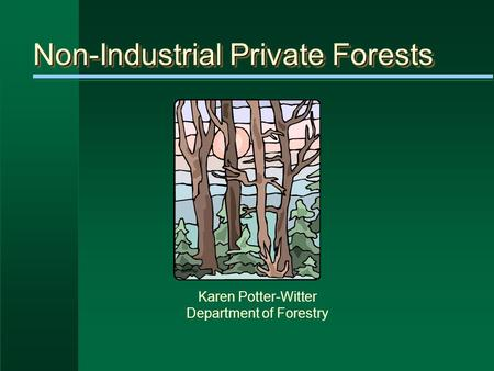 Non-Industrial Private Forests Karen Potter-Witter Department of Forestry.