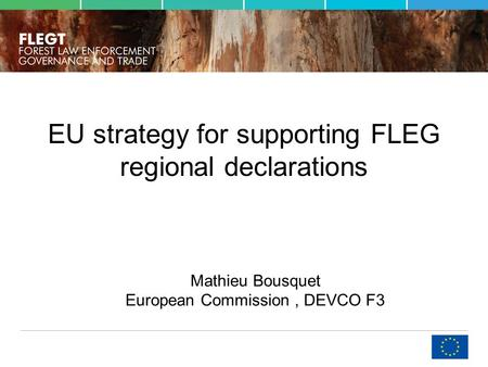 EU strategy for supporting FLEG regional declarations Mathieu Bousquet European Commission, DEVCO F3.