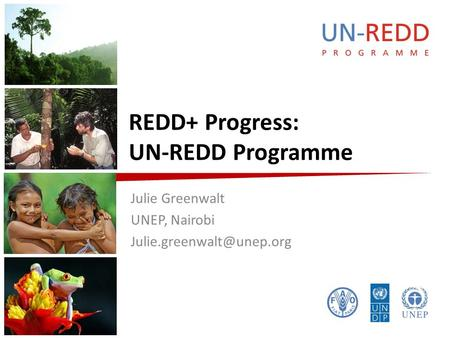REDD+ Progress: UN-REDD Programme