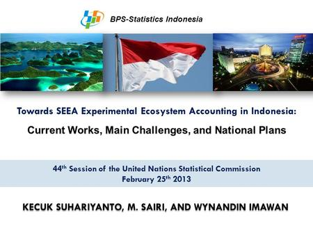 Towards SEEA Experimental Ecosystem Accounting in Indonesia: