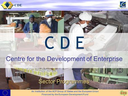 CDE Centre for the Development of Enterprise Sector Programmes An Institution of the ACP Group of States and the European Union Financed by the European.