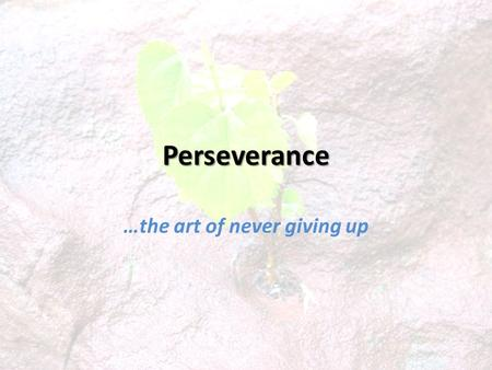 Perseverance …the art of never giving up. Perseverance: a remaining under; patient endurance ( Vine ). Steadfastness, constancy ( Thayer ).