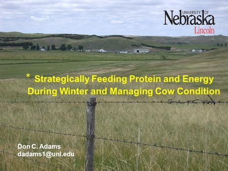 * Strategically Feeding Protein and Energy During Winter and Managing Cow Condition Don C. Adams