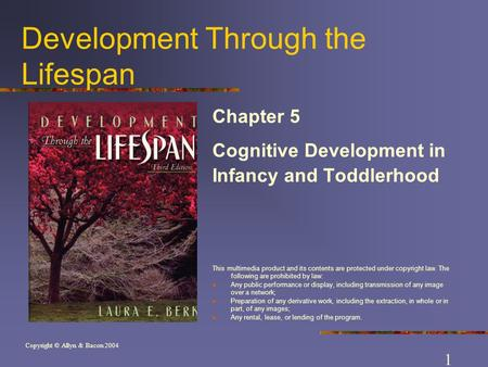Copyright © Allyn & Bacon 2004 Development Through the Lifespan Chapter 5 Cognitive Development in Infancy and Toddlerhood This multimedia product and.