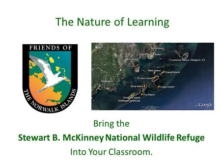 The Nature of Learning Bring the Stewart B. McKinney National Wildlife Refuge Into Your Classroom.