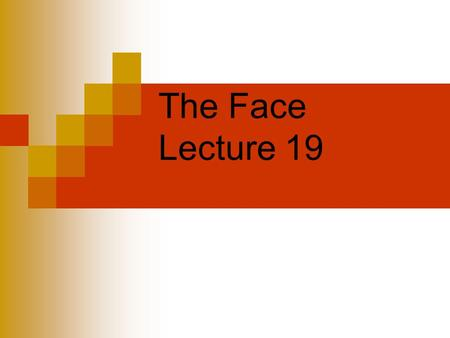 The Face Lecture 19. Facial Injuries Injuries to the cheek, nose, lips and jaw are very common in sports - especially those with moving objects, and or.