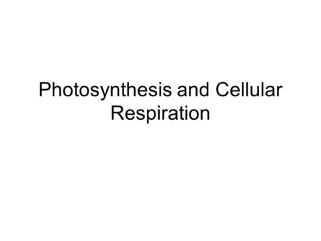 Photosynthesis and Cellular Respiration. Objectives Section 1 1.I can explain in detail the flow of energy through living systems 2.I can compare the.