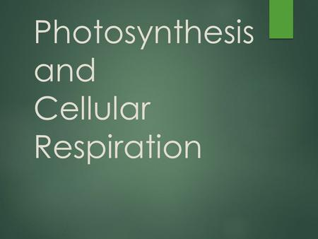 Photosynthesis and Cellular Respiration. Energy Use in Living Organisms  Step 1  Convert sunlight energy into chemical food energy  Ends in Glucose.