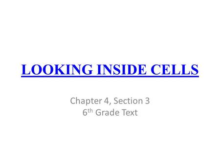 additionally Luxury How Hiv Infects Cells Worksheet Image Collections Worksheet as well Looking Inside Cells Worksheet Answers Also Ponents Of Blood Article as well Looking Inside Cells Worksheet Answers   Livinghealthybulletin further Ch2 Lesson2 Lesson Outline with ANSWERS also  besides Looking Inside Cells Worksheet Answers   Briefencounters Worksheet additionally Looking Inside Cells Worksheet Answers 159 Best Steam Stem besides  moreover Looking Inside Cells Worksheet Answers Also sodium Potium Pump besides The Cell Cycle Coloring Worksheet Answers 10 Best Of Looking Inside besides Cell Structure And Function moreover Looking Inside Cells Worksheet Answers Unique Worksheet Part 5 further Cell Organelles ogies   Color Coding    ppt video online download besides 7 2 Cells  A Look Inside   PDF additionally Cell Structure. on looking inside cells worksheet answers