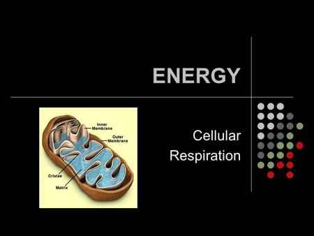 ENERGY Cellular Respiration.