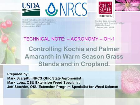 TECHNICAL NOTE: – AGRONOMY – OH-1 Controlling Kochia and Palmer Amaranth in Warm Season Grass Stands and in Cropland. United States Department of Agriculture.