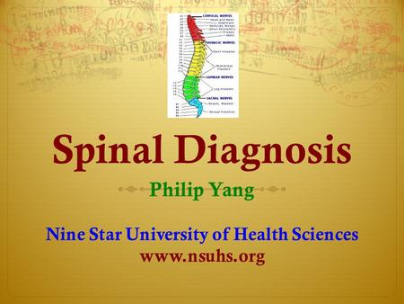 Spinal Diagnosis Philip Yang Nine Star University of Health Sciences www.nsuhs.org.