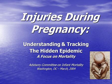 Injuries During Pregnancy: Understanding & Tracking The Hidden Epidemic A Focus on Mortality Advisory Committee on Infant Mortality Washington, DC – March,