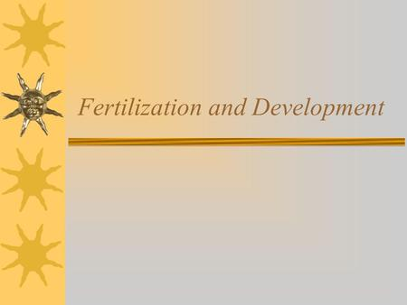 Fertilization and Development
