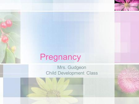 Pregnancy Mrs. Gudgeon Child Development Class. Conception About once each month, an ovum- a female cell or egg is released by one of a woman's ovaries.