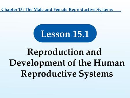 Reproduction and Development of the Human Reproductive Systems