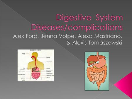Digestive System Diseases/complications