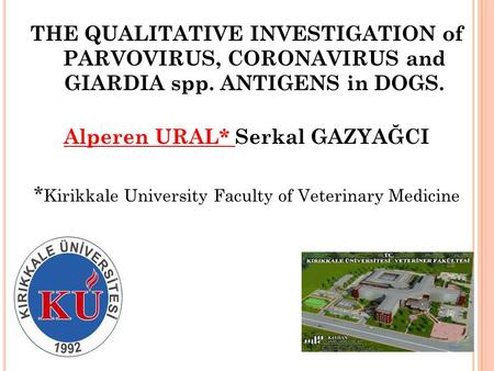 THE QUALITATIVE INVESTIGATION of PARVOVIRUS, CORONAVIRUS and GIARDIA spp. ANTIGENS in DOGS. Alperen URAL* Serkal GAZYAĞCI * Kirikkale University Faculty.