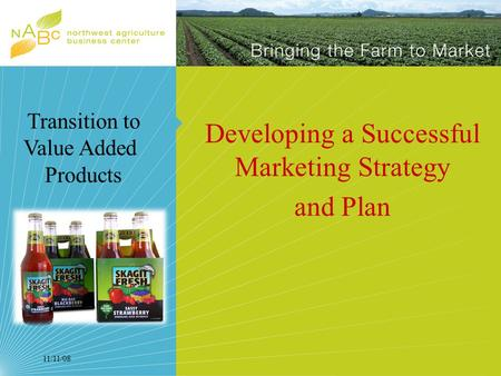 11/11/08 Developing a Successful Marketing Strategy and Plan Transition to Value Added Products.