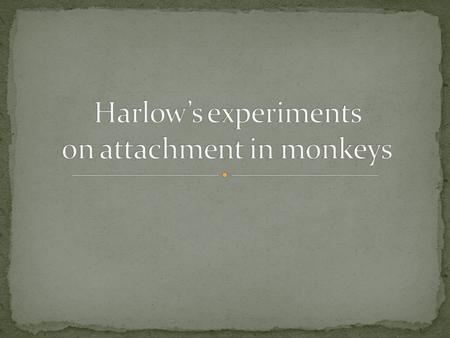 American psychologist Harry Harlow conducted many experiments on attachment using rhesus monkeys.