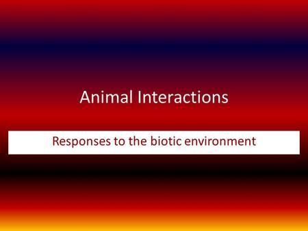 Animal Interactions Responses to the biotic environment.