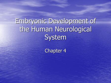 Embryonic Development of the Human Neurological System Chapter 4.
