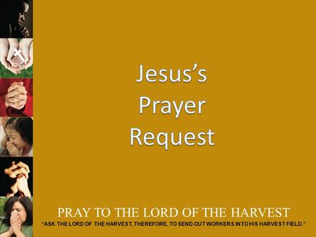 "PRAY TO THE LORD OF THE HARVEST ""ASK THE LORD OF THE HARVEST, THEREFORE, TO SEND OUT WORKERS INTO HIS HARVEST FIELD."""