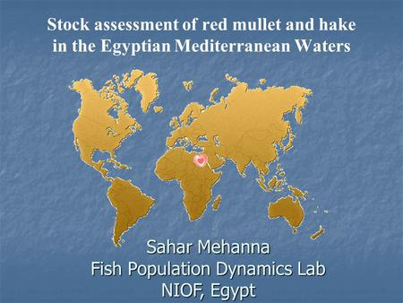 Stock assessment of red mullet and hake in the Egyptian Mediterranean Waters Sahar Mehanna Fish Population Dynamics Lab NIOF, Egypt.