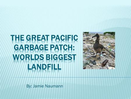By: Jamie Naumann.  Scientists estimate this large garbage patch is twice the size of Texas!  The United Nations Environment Program estimated in 2006.