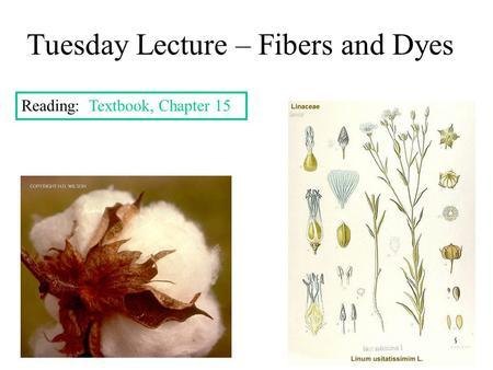 Tuesday Lecture – Fibers and Dyes Reading: Textbook, Chapter 15.