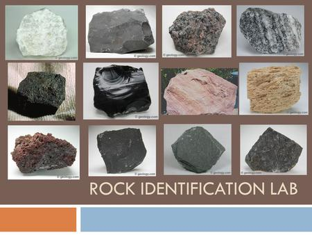 ROCK IDENTIFICATION LAB. What type of rock is this? Where or how is it formed?