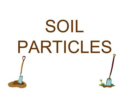 SOIL PARTICLES Soil provides support and nutrients for plant growth.
