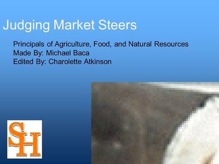 Judging Market Steers Principals of Agriculture, Food, and Natural Resources Made By: Michael Baca Edited By: Charolette Atkinson.