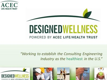 """Working to establish the Consulting Engineering Industry as the healthiest in the U.S."""