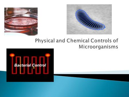 In order to control microorganisms, you must either: Kill them Inhibit their growth.