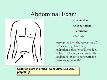 Abdominal Exam Inspection Auscultation Percussion Palpate