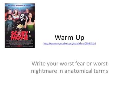Warm Up  Write your worst fear or worst nightmare in anatomical terms.