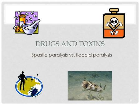 Spastic paralysis vs. flaccid paralysis