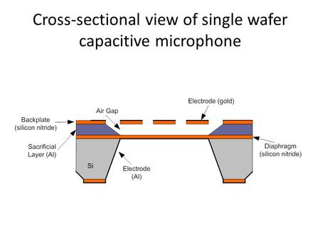 Cross-sectional view of <strong>single</strong> wafer capacitive microphone