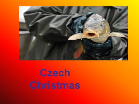 "Czech Christmas. For many, December 24 is the most enjoyable day of Christmas holidays. Its Czech name literally means ""Generous Day"", probably for the."