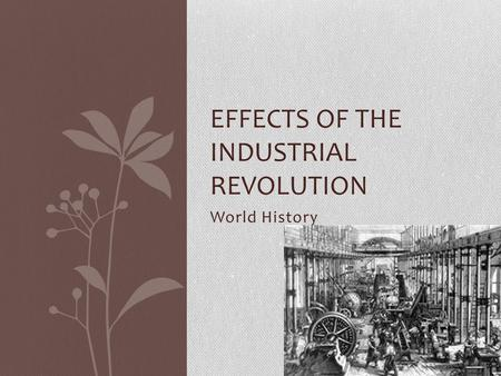 World History EFFECTS OF THE INDUSTRIAL REVOLUTION.