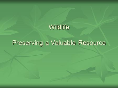 Wildlife Preserving a Valuable Resource. The Values of Wildlife Plants and animals that have not been domesticated are called wildlife. Plants and animals.