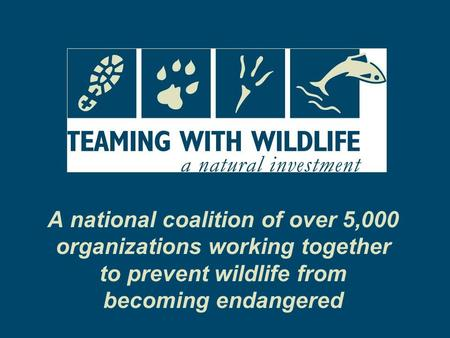 A national coalition of over 5,000 organizations working together to prevent wildlife from becoming endangered.