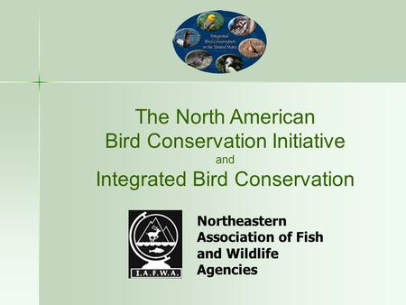 The North American Bird <strong>Conservation</strong> Initiative <strong>and</strong> Integrated Bird <strong>Conservation</strong> Northeastern Association <strong>of</strong> Fish <strong>and</strong> <strong>Wildlife</strong> Agencies.